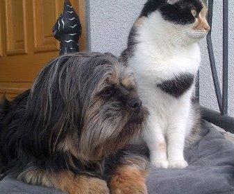 Bella und Lilly